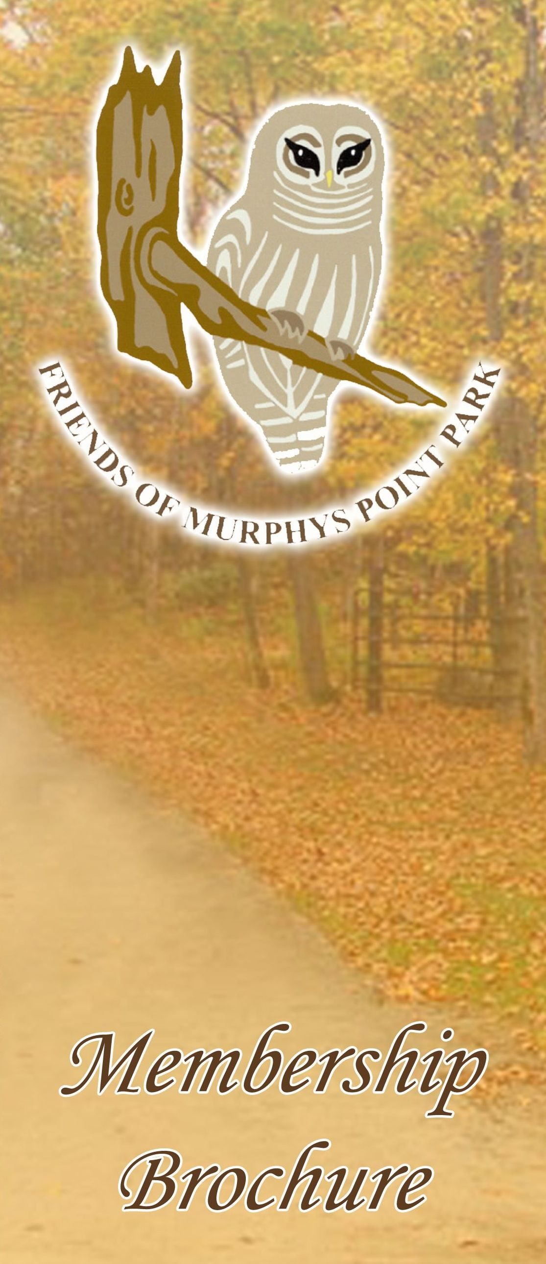 Memberships friends of murphys point park for Membership brochure template