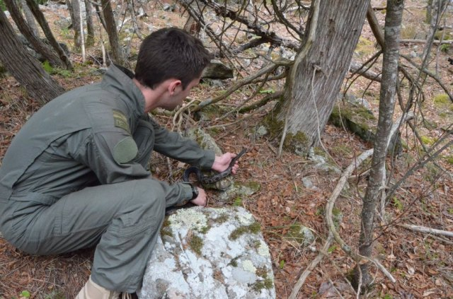 Gray Ratsnake Technician Brock Ogilvie releasing a GRS at a hibernaculum in the spring.